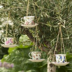 teacup and saucer birdfeeder by the orchard | notonthehighstreet.com