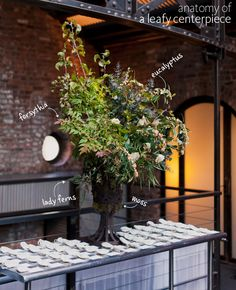 Anatomy of a Leafy Centerpiece | Mademoiselle Fiona Photography | Blog.TheKnot.com