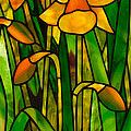 Iris by David Kennedy - Iris Glass Art - Iris Fine Art Prints and Posters for Sale