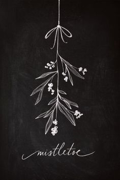 organizationallyimpaired:  Mistletoe
