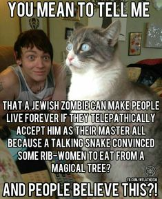 Okay, I know this is a farcical view of Christianity. But I grew up being brainwashed in the Bible Belt. And I love the cat! Anti Religion, Religion And Politics, Religious Humor, Religious People, Bible Belt, Secular Humanism, In This World, Christianity, Thoughts
