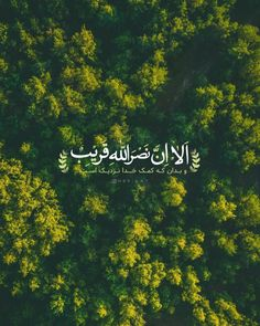 Quran Wallpaper, Persian Quotes, Text On Photo, Daily Inspiration Quotes, Sentences, Allah, Islamic, Inspirational Quotes, Calligraphy