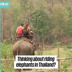 """Eric Damier 