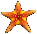 Under the sea clipart set (SB569) - SparkleBox