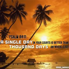 Sebab lebih baik satu hari di pelataran-Mu dari pada seribu hari di tempat lain; lebih baik berdiri di ambang pintu rumah Allahku dari pada diam di kemah-kemah orang fasik. (Mazmur 84:11) #dailyverses #versesoftheday by @pro_msolo via http://ift.tt/1RAKbXL