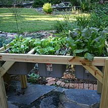 I have really appreciated my original Really Raised Bed for starting t… :: Hometalk