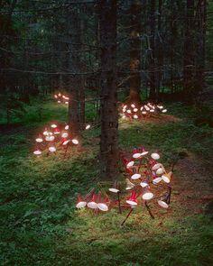 Installation by Rune Guneriussen, When man leaves men behind, 2013