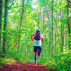 【ronmiya】さんのInstagramをピンしています。 《森林公園 そよ風が気持ちいい #run #runrunrun #runshots #runhappy #runner #running #trailrunning #trailrunninglife #instarunners #instarun #instarunjp #ラン #ランニング #トレイルランニング #森林 #nature #naturelovers #woods #japan #北海道 #outdoors #summer #sunday #夏休み #走る #🏃》