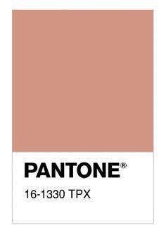 Resultado de imagen de pantone TPX 16-1330