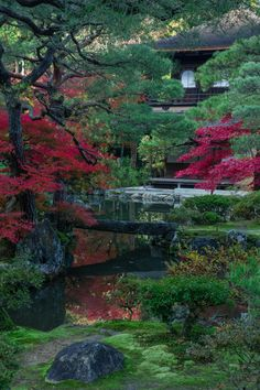 gezzaseyes: Red and Green - Kyoto 2013