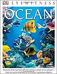 Create your own under the sea world with this ocean in a bottle activity.  Kids can learn about the five ocean zones as they develop their own sea-scape.