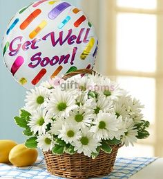 Basket Full of Daisies with Get Well Balloon  - Send Fresh Flowers Internationally   White daisies always bring a smile, bringing to mind innocent days of skipping down the street with a posy of hand-picked flowers. Its the same feeling of youthful joy theyll get when you send this gorgeous arrangement of white daisy poms in a handled basket. Paired with a Get Well balloon, its a beautiful little ray of sunshine when theyre feeling under the weather.
