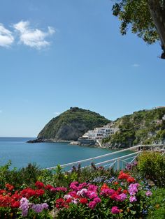 """Giardini Termali  """"Miramare Sea Resort & Spa"""" (Hotel), Sant'Angelo, Isola Ischia,Italia (Maggio)"""