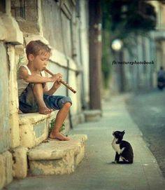 Flute +'