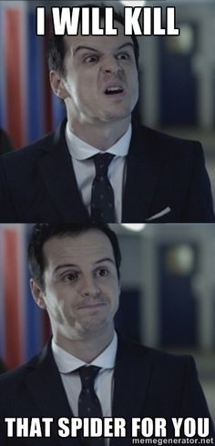 Misleading Moriarty - I will kill that spider for you