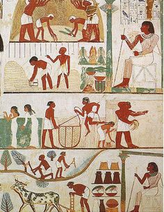 5.La pintura mural en Egipto se utilizaba para decorar las paredes de templos y tumbas. Una técnica muy empleada fue la del fresco. Para conseguir los colores, los pigmentos se diluían en agua antes de ser aplicados en una pared húmeda. La temática era muy variada y oscilaba entre las representaciones religiosas de carácter simbólico (Dioses, ritos) y las escenas de la vida cotidiana ejecutadas con gran realismo. Hay numerosas representaciones de plantas y animales.