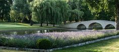 Chateau du Coudreceau Golf Course, 6th Hole - www.cducestates.com #ChateauduCoudreceau #CduCEstates #PrivateGolf #Golf #GolfCourse