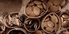 Mateo 14:13–21, Los panes y peces que alimentaron a cinco mil personas