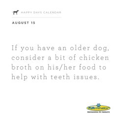 If you have an older #dog, consider a bit of #chicken #broth on his/her #food to help with teeth issues.
