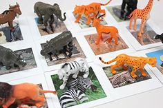 Montessori Safari Animal Match - Miniature Animals with Matching Cards - 2 Part Cards. Montessori Learning Toy, Language Materials Curious Minds Busy Bags http://www.amazon.com/dp/B00WAVI1DA/ref=cm_sw_r_pi_dp_jrefwb0J6506C