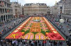 Brussel's Flower Carpet