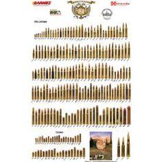 Rifleman's Safari Classic - Bullet Poster