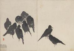 Gawrony na śniegu, plansza 5. z albumu: Wzory rysunków kwiatów i ptaków Seitei. ok. 1890 r. Watanabe Shotei (Seitei)