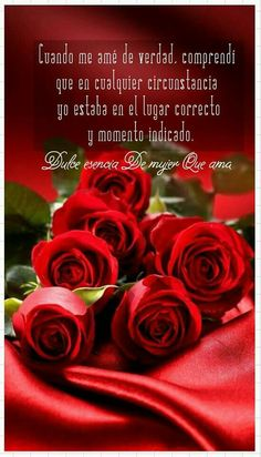 Las Mejores 15 Ideas De Rosas Rojas Frases Rosas Rojas Frases Frases De Rosas Frases