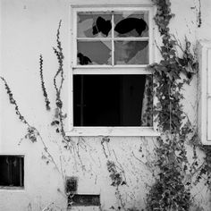 John Divola: Forced Entry, Site 13, Exterior View A (1975), 20x16&qyot;, gelatin on silver print (printed in 1982)