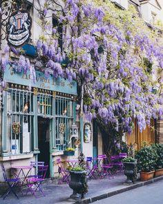 10 Unique Flower Locations in Europe for Spring - Charlies Wanderings Paris France, France Cafe, Design Café, Interior Design, Design Ideas, Beautiful Places, Beautiful Pictures, House Beautiful, Springtime In Paris