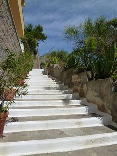 """""""Miramare Sea Resort & Spa"""" (Hotel), Sant'Angero, Isola Ischia,Italia (Maggio)"""