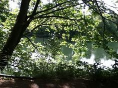 """Corvallis Oregon Willamette River.....will always be """"home"""" to me....."""