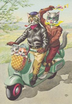 """Scooter cats. - My """"Pindred"""" Spirit friend Ashaley Lenora posted this with her 2016 New Year wishes to me on Facebook."""