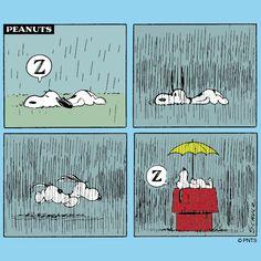 Snoopy takes a nap.