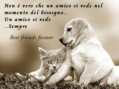 """Buongiorno Link: Buongiorno: """"Best friends forever"""""""