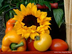 Create a centerpiece for your outdoor party with fresh produce and sunflowers - nature's colors are gorgeous!