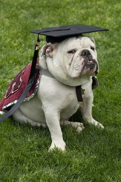 Thurber gets into the graduation spirit during Commencement 2014.