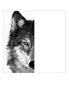 Art Projects for Kids: Wolf Face Template