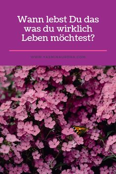Wann lebst du das was di wirklich Leben möchtest?Energie - und Bewusstseinsarbeit, Mindset Coach, Access Consciousness Quote Of The Day, Quotes, Consciousness, Life, Quotations, Quote, Shut Up Quotes