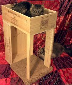 El cajón de vino gato condominio Original con rascador de