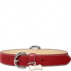 accessories for my dog :)  Leather Collar With Bone Charm