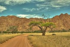 """""""Take the path less travelled and Come visit Africa ! Fictional World, Out Of Africa, Paths, Cool Pictures, Trail, Most Beautiful, Country Roads, Adventure, Nature"""