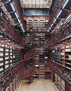 衆議院図書館 オランダ