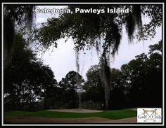 Caledonia, Pawleys Island, South Carolina