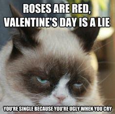 Memes Vault Happy Birthday Meme with the Grumpy Cat Best Cat Memes, Funny Cat Memes, Funny Cats, Funny Animals, Funny Quotes, Cat Jokes, Life Quotes, Funny Humor, Grumpy Cat Valentines