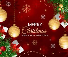 CitrusStudio is a leading web design Mississauga and website development company offers eCommerce, WordPress and SEO friendly custom design websites. Contact our web designers today. Christmas Bulbs, Merry Christmas, Stay Kind, Happy New Year 2020, Seo Company, Bustle, Families, Custom Design, Forget