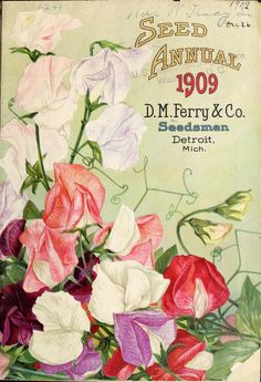 D.M. Ferry & Co,'s - Seed annual, 1909