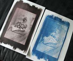 cyanotype books - Google Search