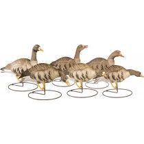 Canada Goose expedition parka outlet cheap - Image for Hard Core Full-Body Lesser Canada Goose Decoys 6-Pack ...