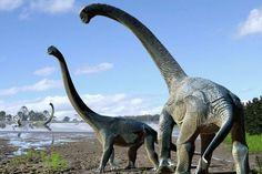 Savannasaurus elliottorum, titans aurez trouvé au Queensland en Australie. Auteur : Travis Tischler / Age Australian of Dinosaurs Museum of Natural History (AAOD).